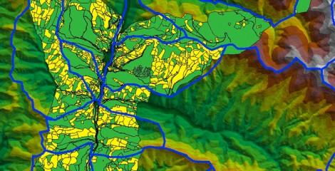 Detalle de parcelas catastrales junto a unidades o macizos creados en Agrupaciones. Roncal 2010