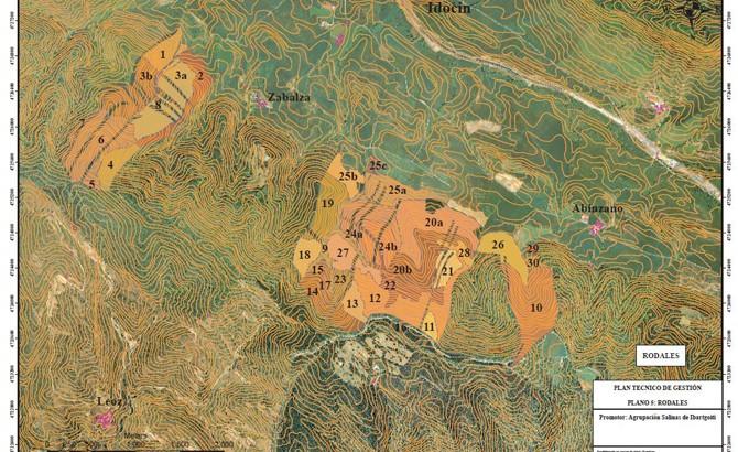 Detalle de rodales creados tras agrupar parcelas catastrales. ibargoiti 2011