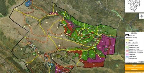 Detalle de cartografía en ordenación forestal