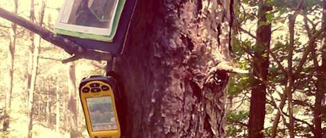 servicios proyectos sielba ingenieria medio rual
