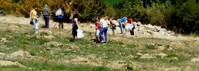 Irati-Compost-Sielba-forestación