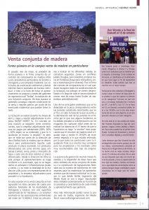 Artículo_Mendixut_venta_conjunta